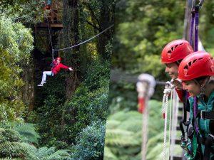 Woman-on-zipline-girls-looking-down-from-swing-bridge