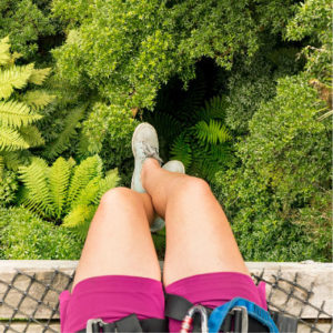 Legs-with-forest-below