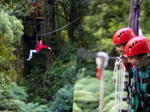 Woman-on-zipline-two-girls-looking-down-on-forest-from-bridge\