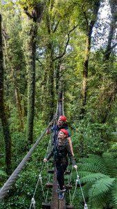 Couple-on-swingbridge-admiring-the-forest