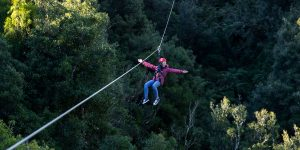 woman-above-forest-on-zipline