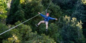 Man-smiling-above-forest-on-zipline