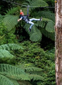 Man-enjoying-zipline-above-forest