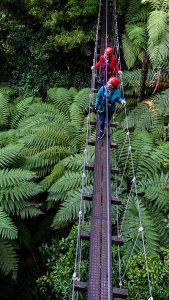 Two-friends-walking-across-swingbridge-above-forest