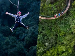 Girl-on-zipline-group-of-people-on-cliff-walk-above-trees