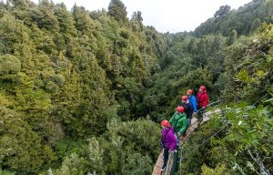 Group-of-friends-walking-along-cliff-above-forest