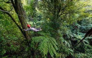 Man-on-zipline-through-forest