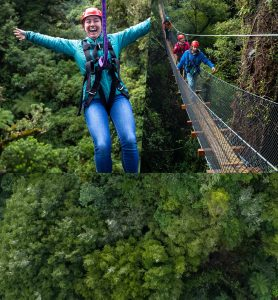 Woman-on-zipline-people-walking-across-swingbridge