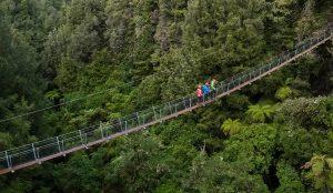Three-people-walking-across-swingbridge-above-forest