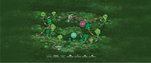 Canopy-tours-map