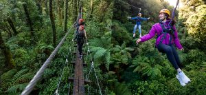 Rotorua-Canopy-Tours-Eco-Adventures