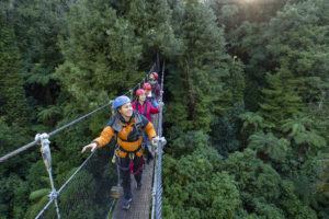 Ultimate treetop adventure
