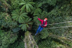 Rotorua Experiences