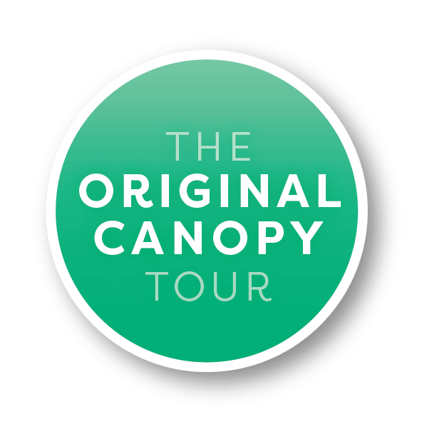 original-canopy-tour-zipline