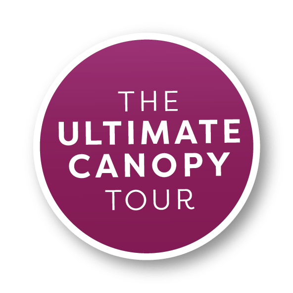 ultimate-canopy-tour-zipline