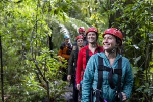 Best Rotorua Activity