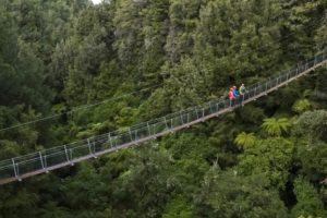 Best Swingbridges New Zealand