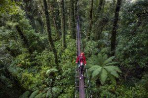 Rotorua Adventure Activity
