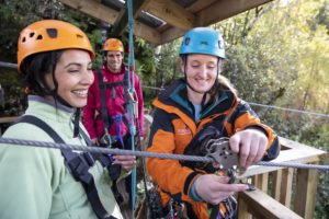 Zipline Guided Tours