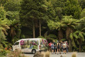 Zipline Tour Rotorua